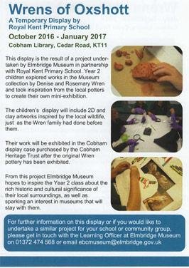 Wrens of Oxshott Display at Cobham Library
