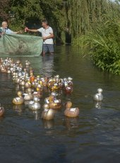 40 - Special duck race in honour of the Olympic Team GB