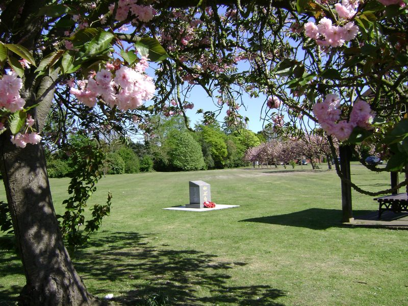 Memorial and Cherry Trees